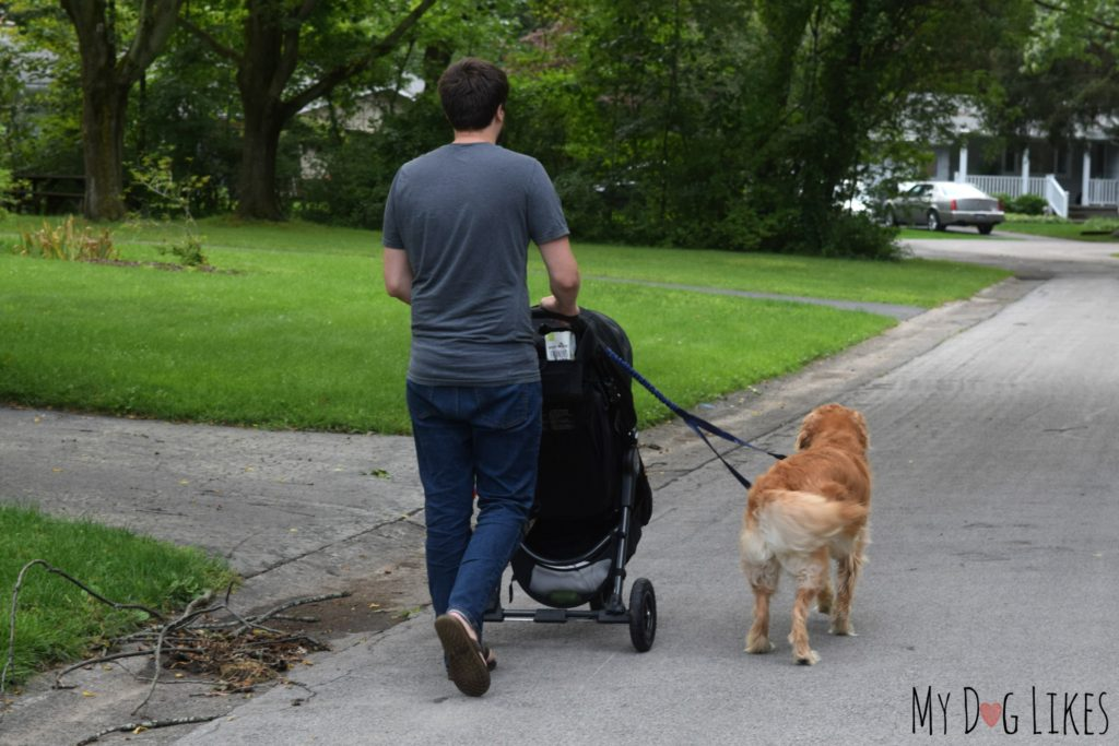 Walking dog with baby stroller