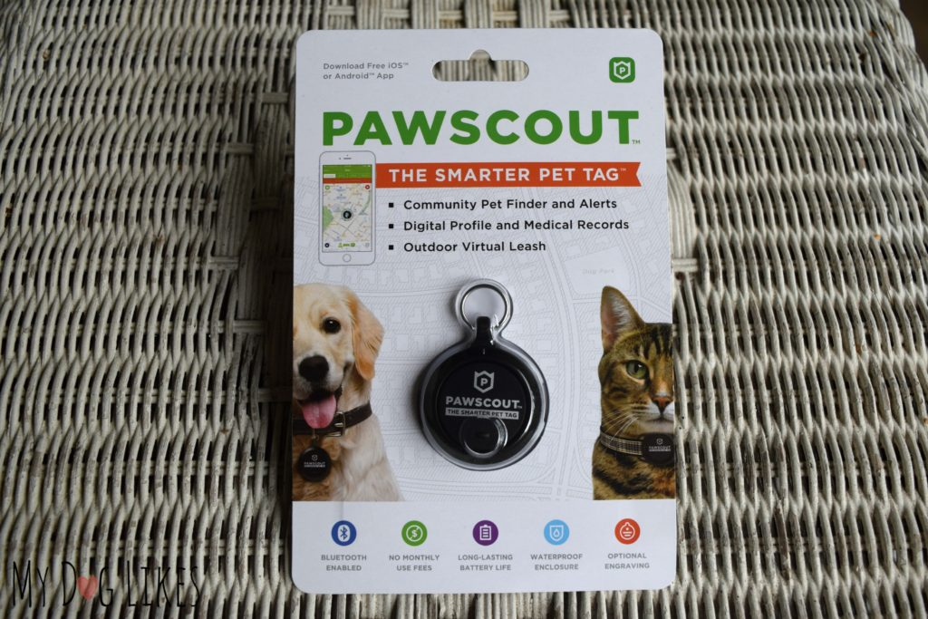 Pawscout Pet Tag Review